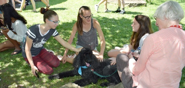 "High school students pet a dog in the courtyard of the Vestal High School during ""DeStress Day."""