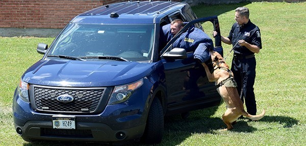 A police dog attacks a New York State trooper while under the control of another trooper during a K 9 demonstration at Vestal High School during the Youth Police Academy on July 11, 2018