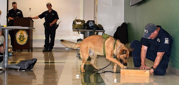 New York State troopers show Youth Police Academy cadets how a K 9 partner is trained to scratch when alerting to the presence of drugs